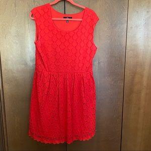 Ronni Nicole Pullon Dress 14P